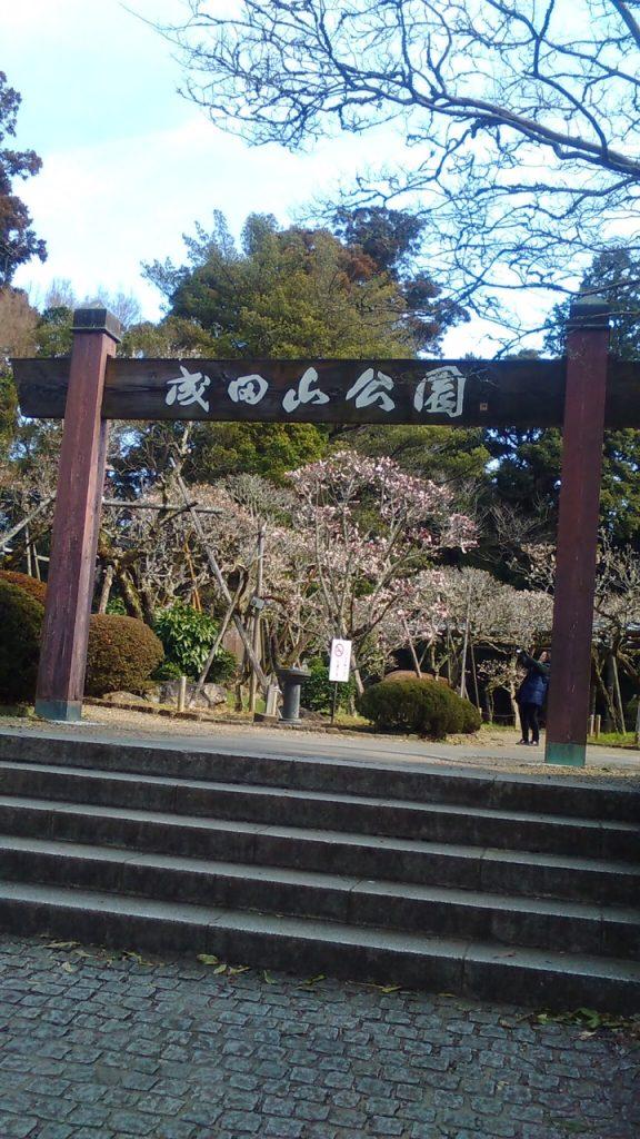 成田山で観梅して来ました~(^^♪